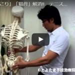 とよたま手技治療院|プロが教えるセルフケア&エクササイズ動画